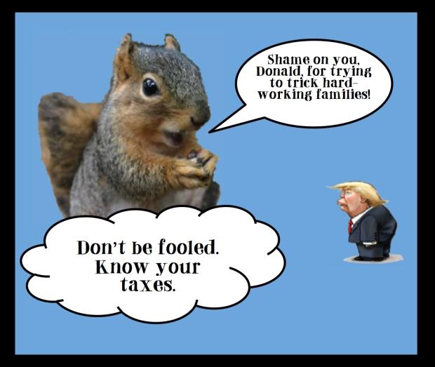tax-squirrel-deductions-credits4