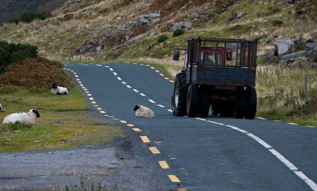 Traffic_Jam,_West_of_Ireland